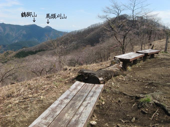 浅間嶺展望台から見た大岳山から延びる稜線