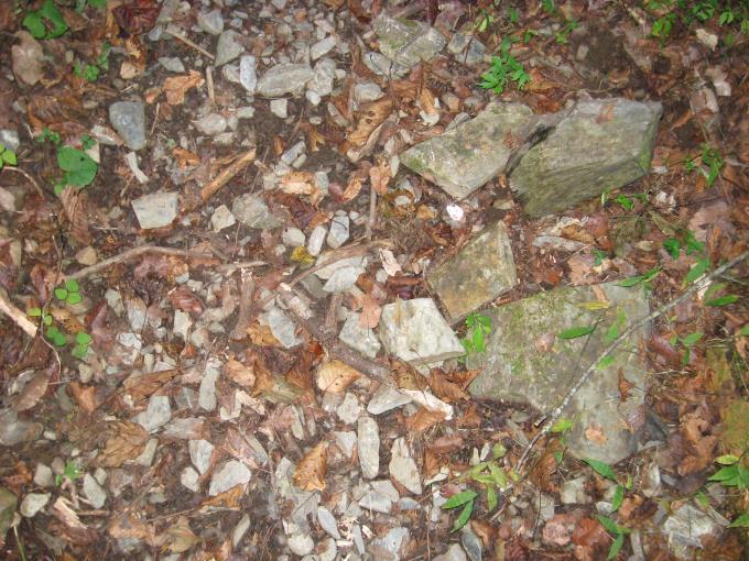 石の多い登山道