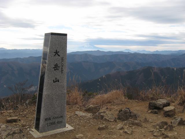 大岳山山頂からの見晴らし