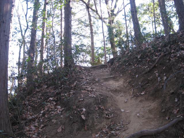 登山道の滑りやすい場所の写真
