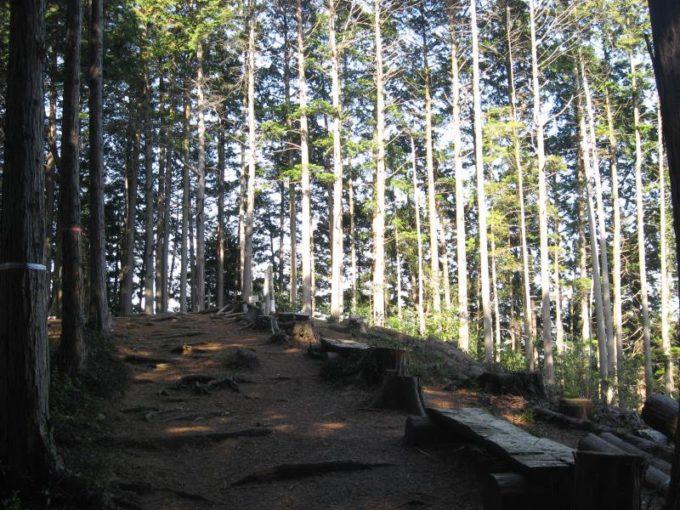 山頂手前のベンチ