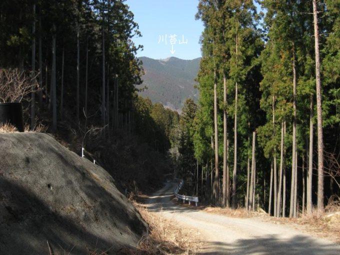 大根の山の神から見える川苔山