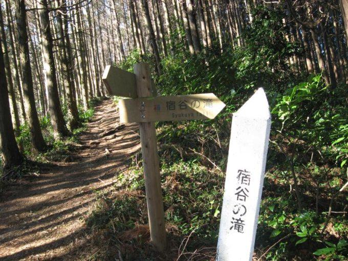 物見山と北向地蔵を結ぶ登山道と合流