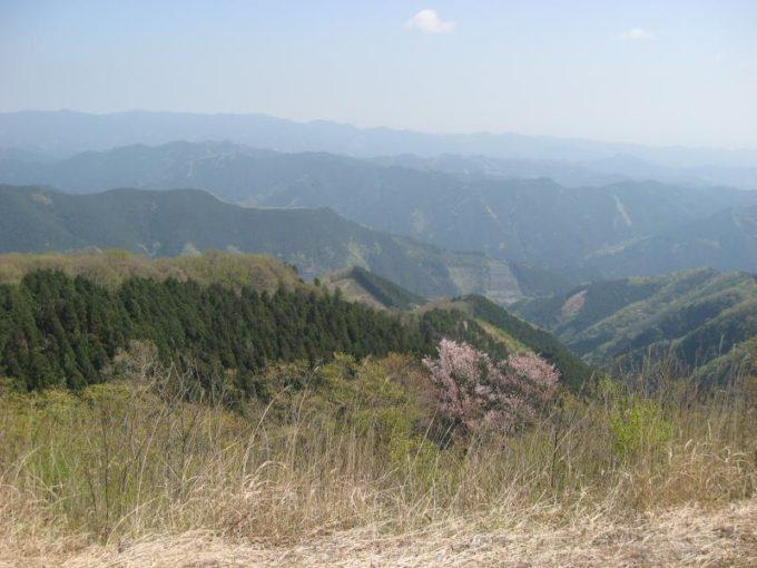 棒の折山山頂からの展望