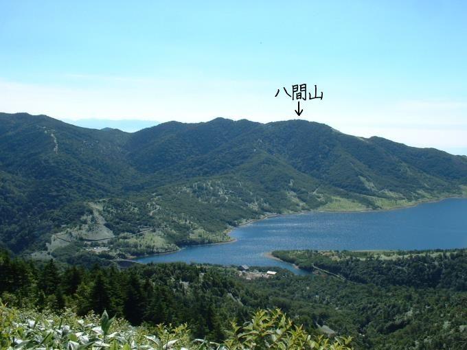 三壁山登山道からの展望(野反湖と八間山)
