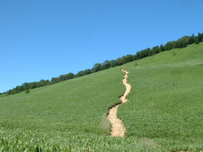 カモシカ平を横切る登山道