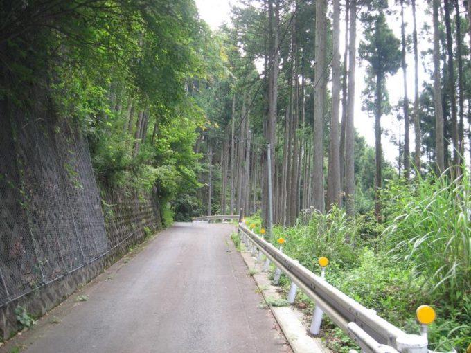 登山口へ舗装道路を歩く