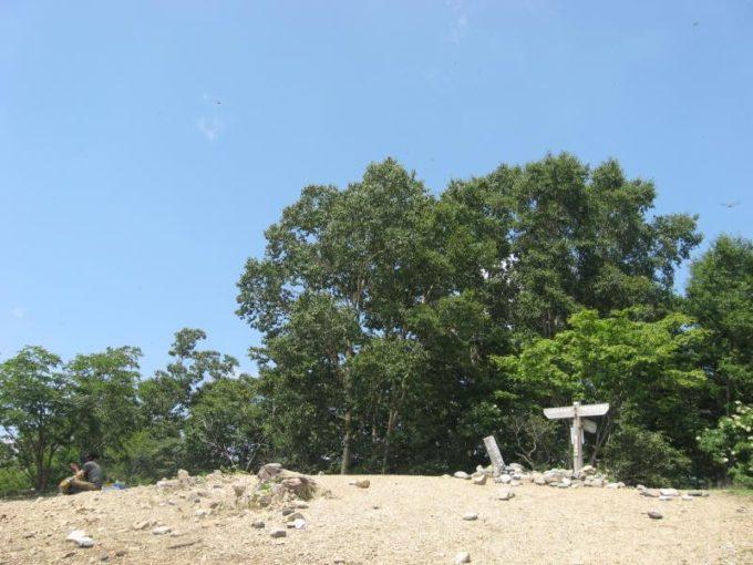 鷹ノ巣山山頂全景
