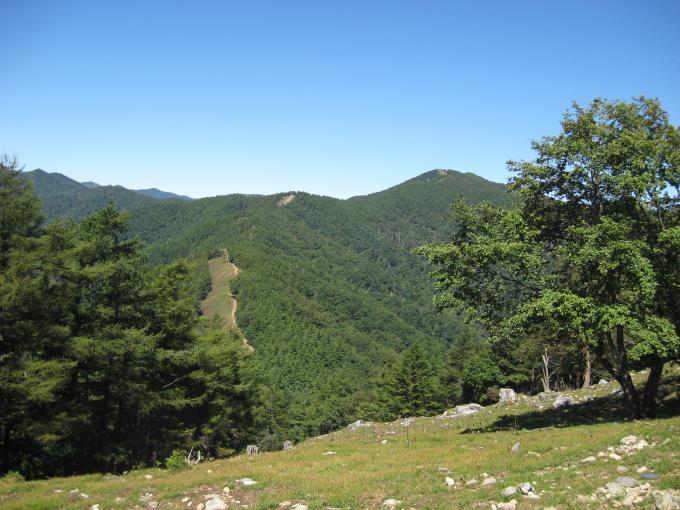七ツ石山山頂から見た雲取山と登山道