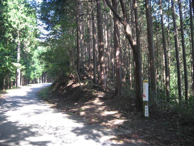 登山道入り口(ここで舗装道路から森の中へ)