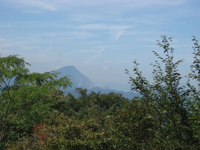 山頂から見える武甲山