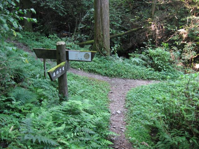 朝に通り過ぎた分岐に戻る(左:傘杉峠、右:黒山三滝)