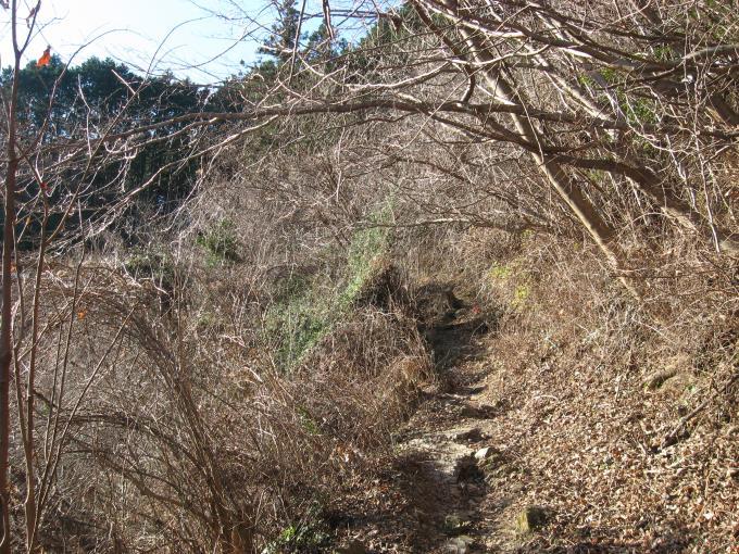 日当たりの良い登山道