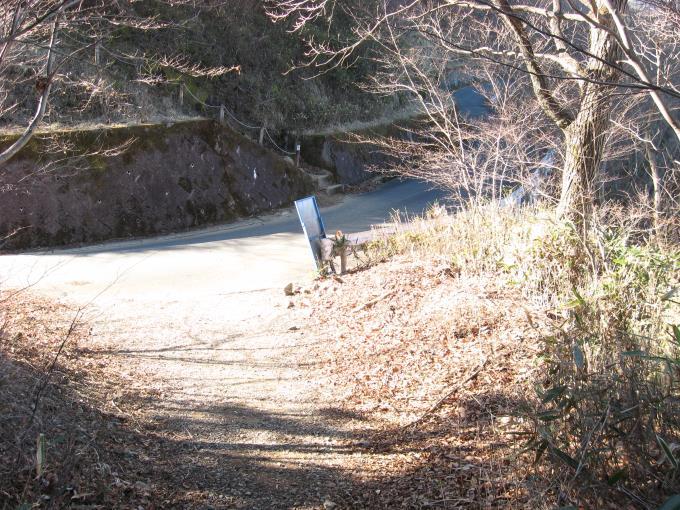 舗装された林道と合流