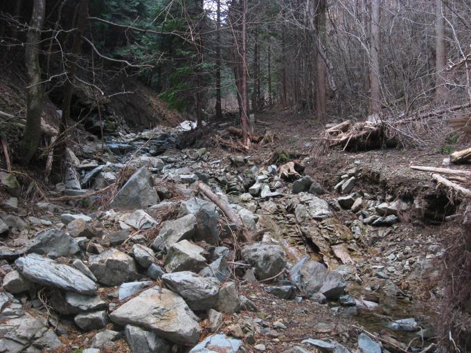 沢沿いにある登山道