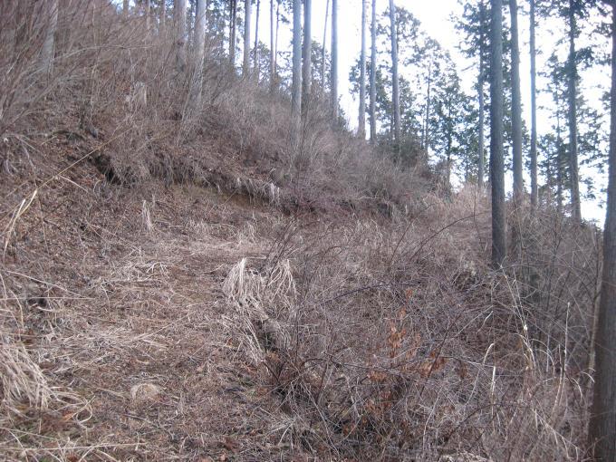 笠山山頂下の林道