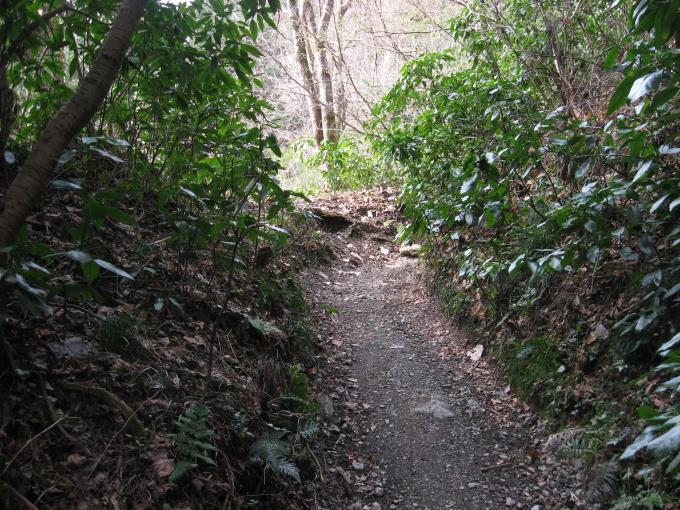 狭い登山道