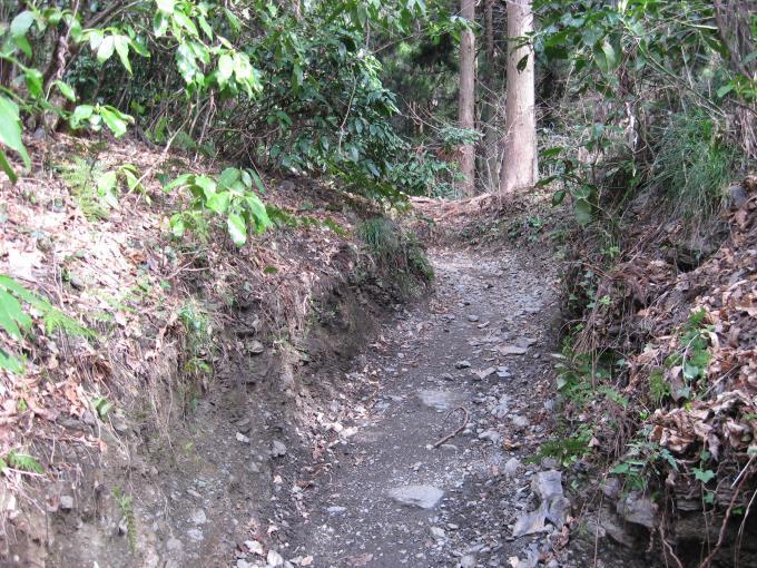 管理されている登山道