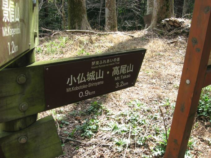 小仏峠にある案内板。小仏峠からは高尾山、小仏城山、景信山そして相模湖方面へ行くことができます。