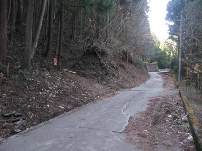 林道の向かいの登山口