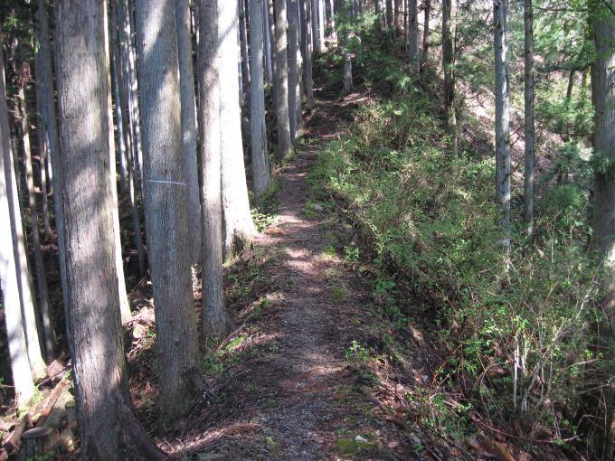 尾根上にある登山道