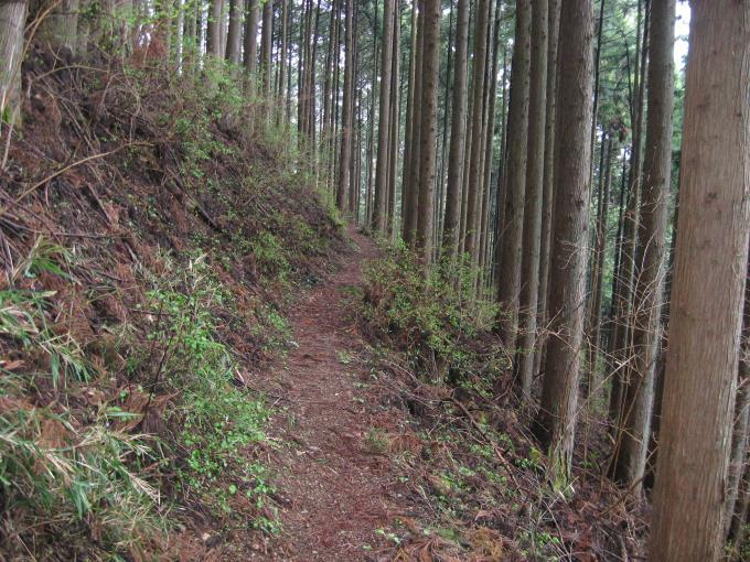 下りになる登山道
