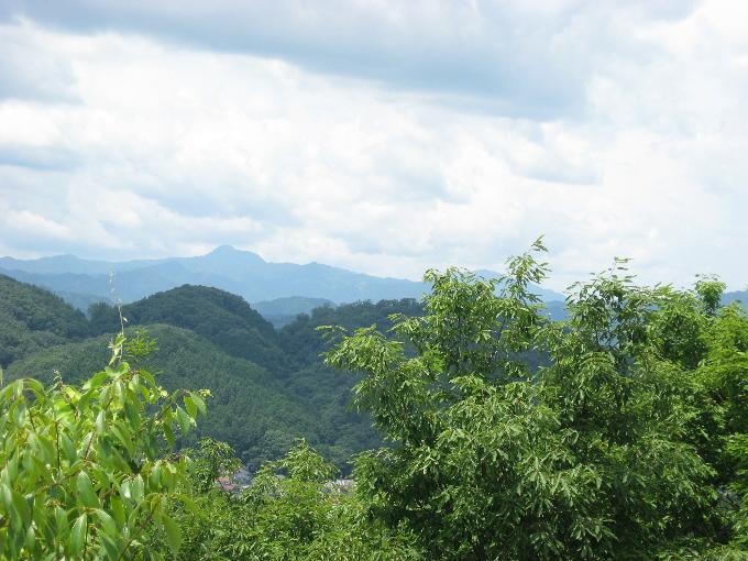 天覧山からの展望