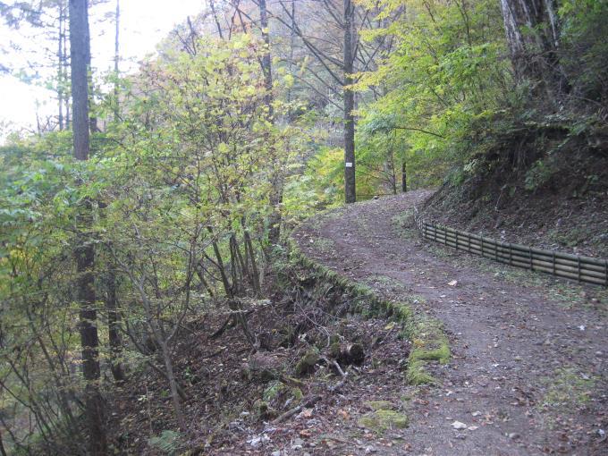 未舗装の林道