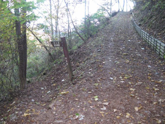 反対側にも登山道が・・・。