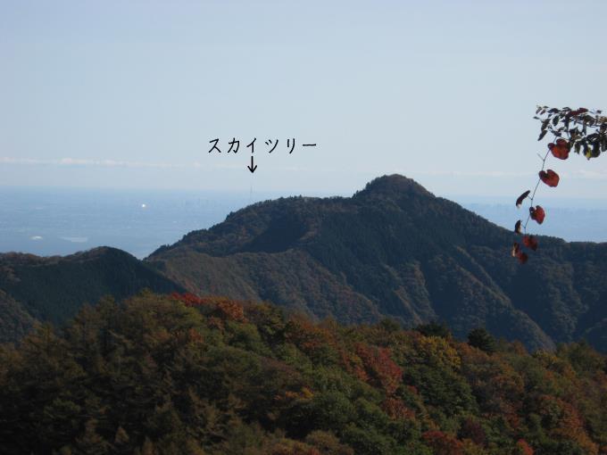 大岳山とスカイツリー