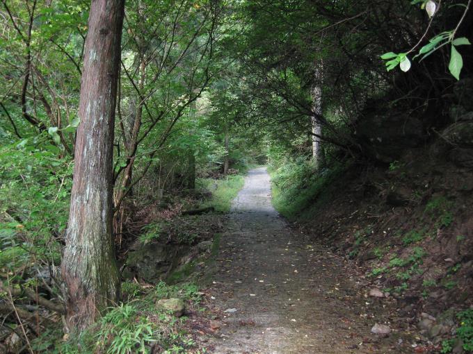 登山届ポストより先の登山道