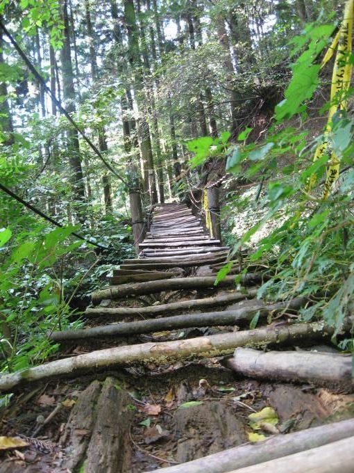 崩れかけている木製の階段