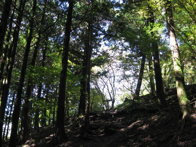 登山道の先に見えてきた案内板