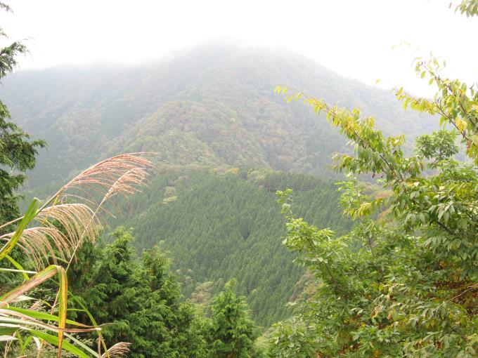 小持山とその稜線