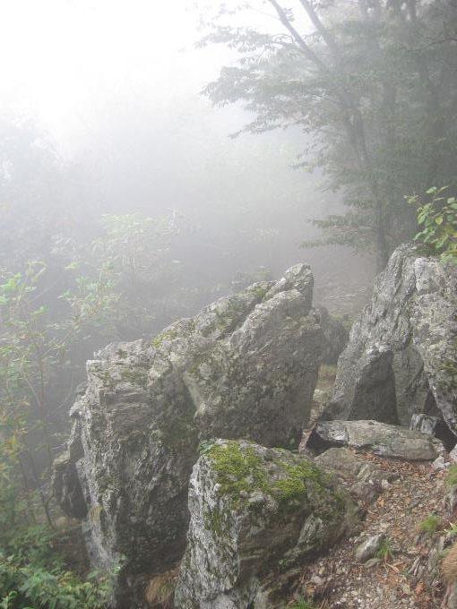 小持山から大持山への途中にある岩場