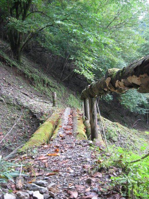 手すりが朽ちかけている木橋