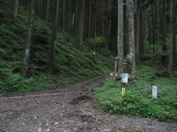 登山道と林道の合流地点の写真