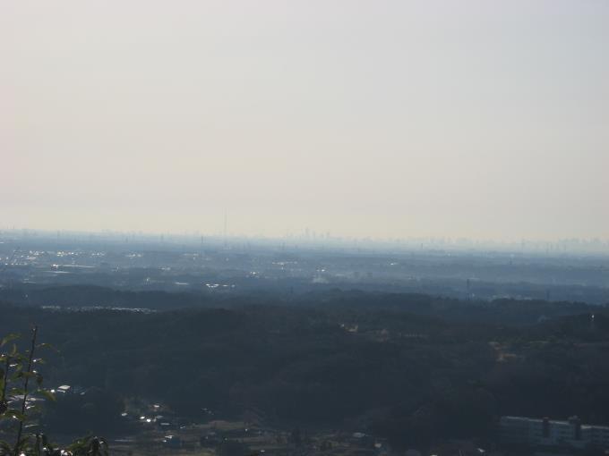 二の鳥居から見たスカイツリーと都内の高層ビル群