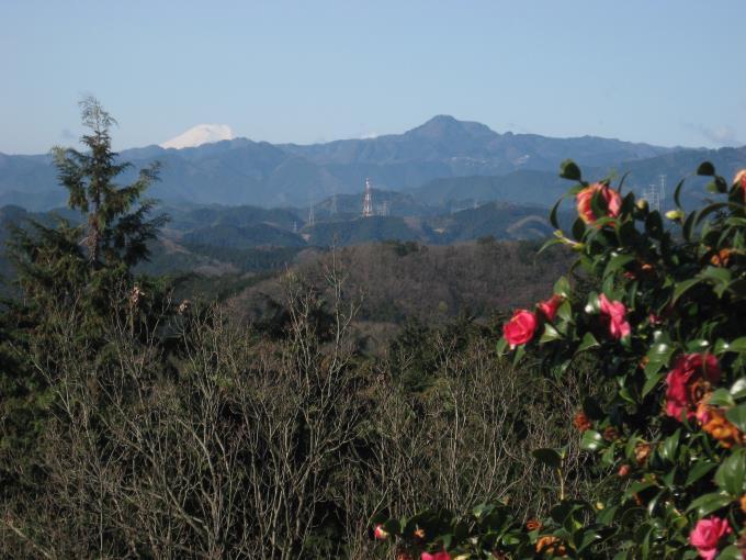 茶店「ふじみや」から見た富士山と大岳山