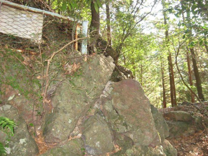 登山道との合流地点の写真