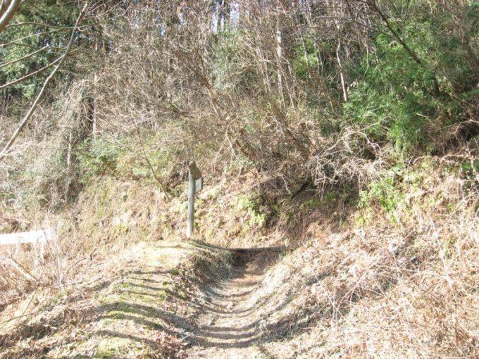 登山道が車道と合流する場所の写真