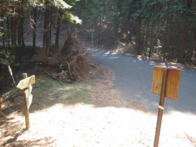 登山道出口の様子