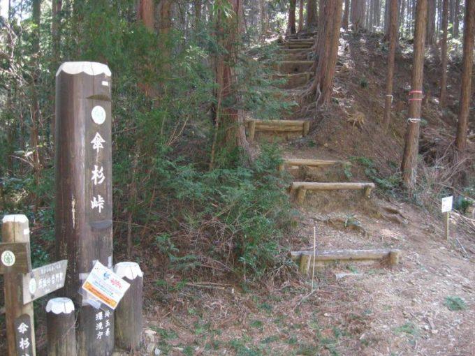 傘杉峠から顔振峠への登山道入口