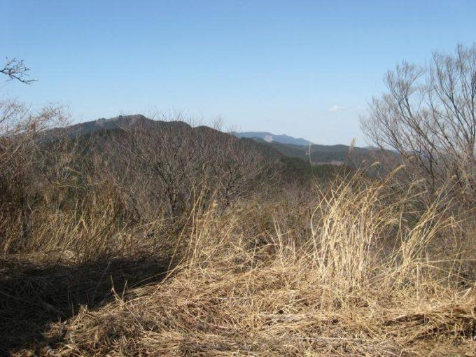 雨乞い塚(展望台)から関八州見晴台方面の展望