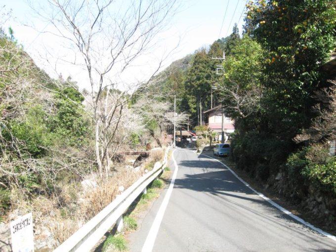 舗装道路の様子