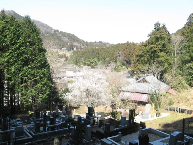 お墓の前からの眺め