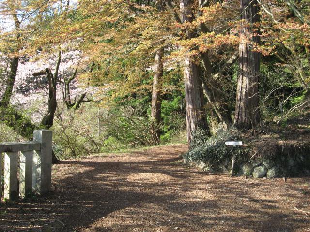 登山口は愛宕神社の左へ