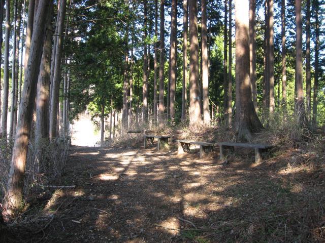 ベンチの置かれた登山道