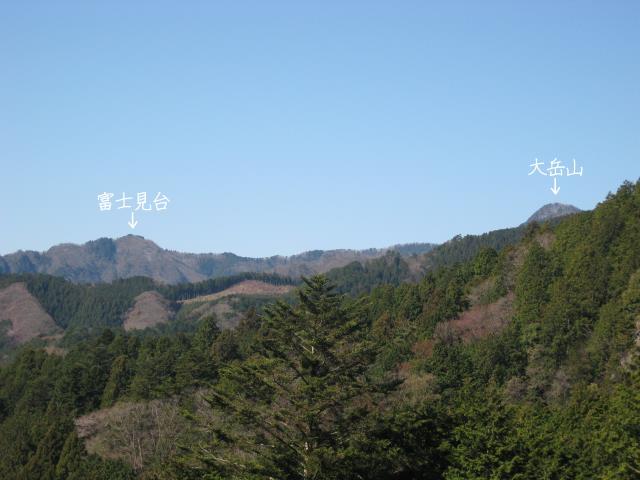 大岳山と富士見台