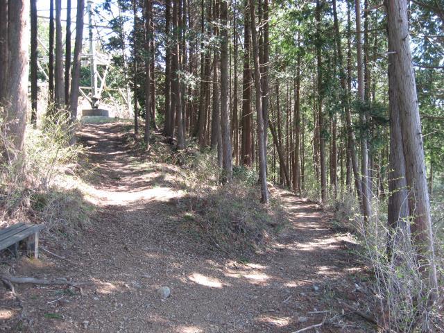 分岐(右:手すりのある眺めの良い登山道へ)
